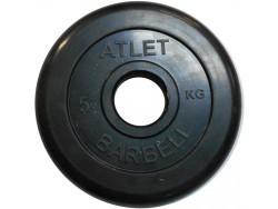 5 кг. диск (блин) 51 мм.
