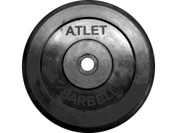 10 кг. диск (блин) 31 мм.