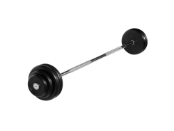 Штанга неразборная с черными дисками 32.5 кг